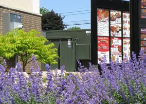 KFC Landscaping Project
