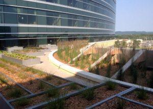 Winona Nursery Rooftop Landscaping