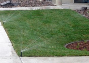 Winona Nursery Irrigation